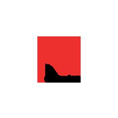 e-Corvina